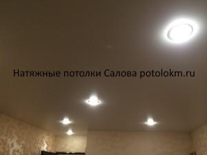 Натяжные потолки Салова57-10