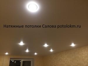 Натяжные потолки Салова-57