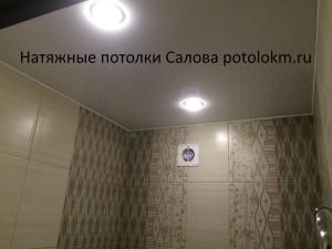 Натяжные потолки Салова-8