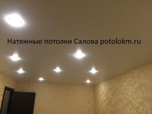 Натяжные потолки Салова7-3